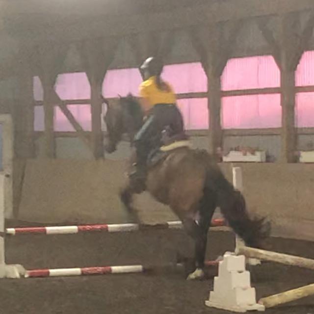 Equestrian life💖