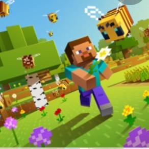 minecraft._gamer avatar