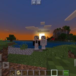 @minecraft.twins