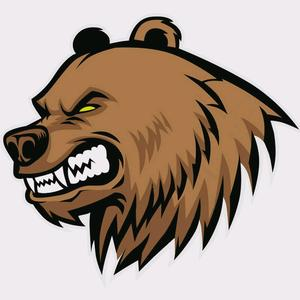 @bearwercsgo - BearWerCSGO