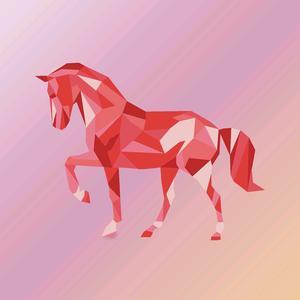 Horses lovers tiktok