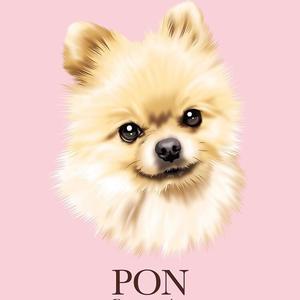 @pon_pon_ponchan