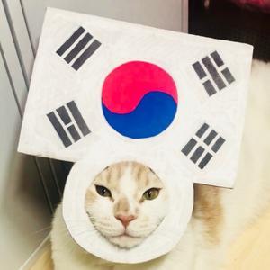 @naljappyo - 뾰,나를부르는고양이