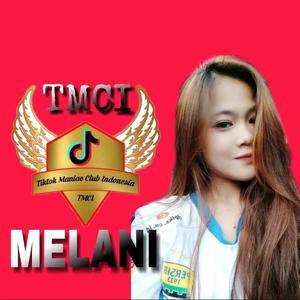 @melaniharyadi33