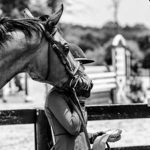 equestrian edit