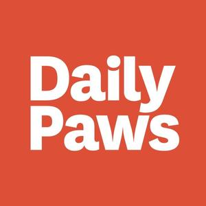 Daily Paws