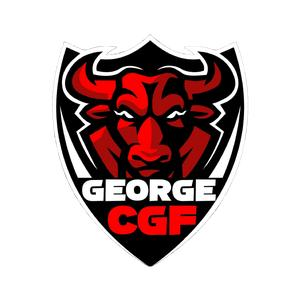 @georgecgf