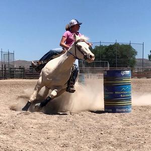 Barrel Racing Training Help