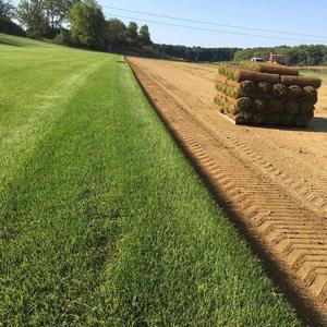 Green Horizons Turf Farm