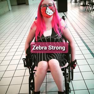 ZebraGore